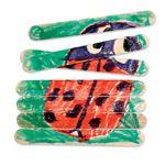 Popcicle stick puzzles