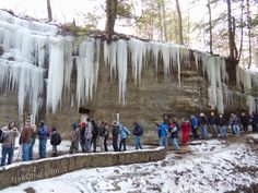 TrekOhio Winter Hike Calendar: Our list of organized, group hikes taking place throughout Ohio during the months of January and February of Winter Hiking, Ohio, Calendar, Explore, Places, Road Trips, February, Group, Lugares