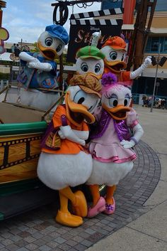 Donald Duck & Family