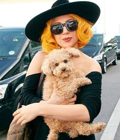 "Lady Gaga and pet dog ""Fozzi."""