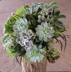 Hand-tied bridal bouquet with Echeveria 'frosty,' Echeveria 'Violet Queen,' Echeveria coccinea, Mammillaria gracilis fragilis, green leuca. Wedding Arrangements, Flower Arrangements, Floral Bouquets, Wedding Bouquets, Green Bouquets, Blue Succulents, Cactus Wedding, Succulent Bouquet, Succulent Care