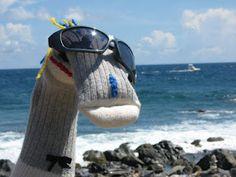 Bob Trotteur à Aruba ( une île de la mer des Caraïbes située au large des côtes du Venezuela)