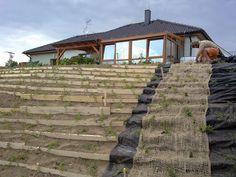 Pergola, Outdoor Structures, Cabin, House Styles, Plants, Garden Ideas, Gardening, Home Decor, Google