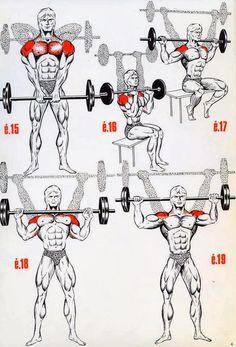 The Fitness era: BEAST shoulder workout!