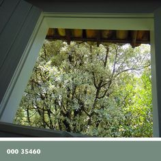 # 9 | Theme: Colorful Walk #nature #window #color #colorful