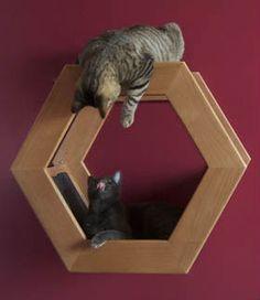 Полки на стену для кошек деревянные