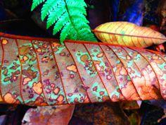 jaguar leaf, 2014