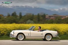Triumph Spitfire - white like mine  OMG - I sooooo LOVED this little car-  I miss owning one.