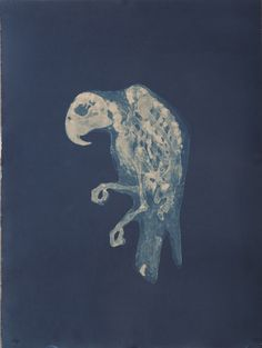 Relics (series) {cyanotype} | Carrie Witherell
