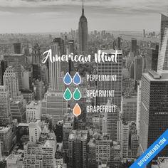 American Mint - Essential Oil Diffuser Blend