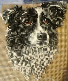 Border collie hama perler sprite by Jelizaveta on deviantART Mehr Easy Perler Bead Patterns, Melty Bead Patterns, Diy Perler Beads, Perler Bead Art, Hama Beads Animals, Beaded Animals, Peler Beads, Beads Pictures, Iron Beads