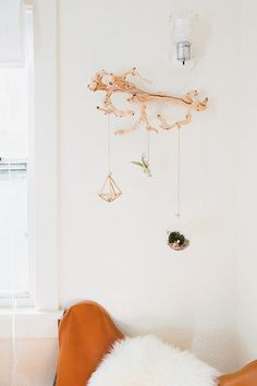 cool wall decor idea -- secure a piece of reclaimed wood on the wall and hang air plants and terrariums off of it