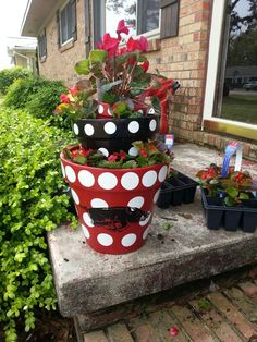 I love red and black polka dot pots. Sorry not the razorback though.