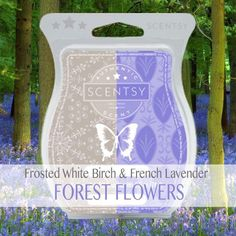 Mix it up Monday!!   Tonight's recipe ~ Forest Flowers  To create this lovely tranquil scent, blend in your warmer ~ 1 cube Frosted White Birch & 1 cube French Lavender  https://spiritwellnesswithcindy.scentsy.com.au