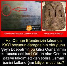 Bilgi Gamer Setup, Einstein, Don't Forget, History, Twitter, Infographic, Knowledge, Ottoman Bench, Historia