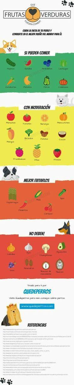 Las frutas y verduras que pueden comer o las que no.