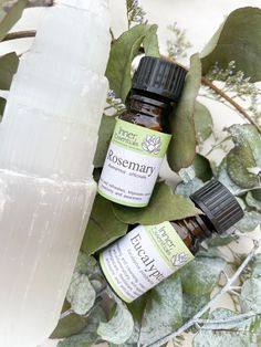 Rosemary and eucalyptus essential oils Eucalyptus Essential Oil, Essential Oils, Decongestant, Aromatherapy, Essentials, Essential Oil Uses, Essential Oil Blends
