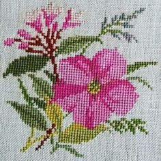 Linhas e Pontos Cross Stitch Rose, Cross Stitch Flowers, Cross Stitch Embroidery, Hand Embroidery, Filet Crochet, Crochet Motif, Cross Stitch Designs, Cross Stitch Patterns, Digital Scrapbook Paper