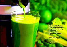 a green tonic that will boost your blood Yummy Drinks, Healthy Drinks, Healthy Tips, Healthy Food, High Protein Diet Plan, Protein Diets, Bebidas Detox, Doterra Recipes, Protein Shake Recipes