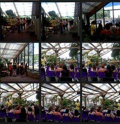 """Workshop """"Cactus e suculentas"""" realizado no passado Sábado (23/07/2016)"""