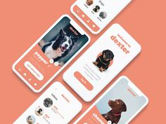 Dexter App for Dog Shelters designed by Subash Giri. Connect with them on Dribbble; Ui Design Mobile, Mobile Application Design, App Ui Design, Mobile Ui, Dog Apps, Pag Web, Shelter Design, Shelter Dogs, Animal Shelter