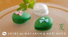 夏は青葉・抹茶風味のマカロン 京都北山マールブランシュ