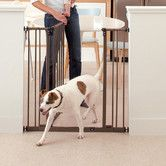 Found it at Wayfair - Extra Tall Deluxe Easy Close Metal Gate with 2 Extensions