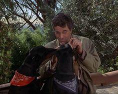 Columbo - Peter Falk with 2 Dobermanns.-- don't say Rosebud around them! Mans Best Friend, Best Friends, Columbo Peter Falk, Doberman Shepherd, Doberman Love, I Like Dogs, Pet Breeds, Companion Dog, Doberman Pinscher