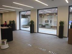 Pflanzen als Raumbegrünung für Ihre Firma. Gerne beraten wir Sie. http://www.blumen-rombach.de/