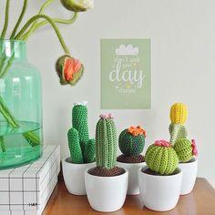 Crocheted cactus: super fun to make. Diy Crochet Flowers, Crochet Cactus, Crochet Flower Patterns, Crochet Home, Crochet Gifts, Cute Crochet, Cactus Flower, Cactus Plants, Cactus Craft
