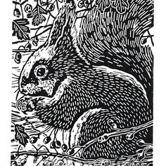 Squirrel art - Squirrel in the Hawthorn  - Original Linocut Print in black £38.00