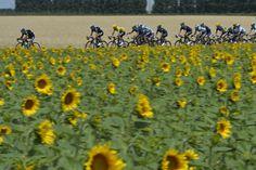 ツール・ド・フランス2013第15ステージ