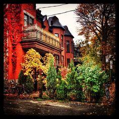 L'aitomne dans le Mile-End.  #automne #fall #montreal #quebec #colors #street #city #p... | Use Instagram online! Websta is the Best Instagram Web Viewer!