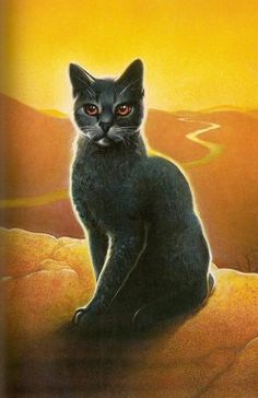 warrior cats stormfur | Stormfur - Warrior Cat Wiki