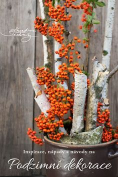 Diy Halloween Decorations, Container Gardening, Fall Decor, Ale, Autumn, Fall Winter, Sweet Home, Wreaths, Plants