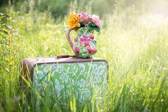 Dla wielbicieli kwiatów :)