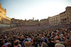 Toskana zu sehen Siena ist eine wunderschöne Stadt in der Toskana, in der jährlich ein Event stattfindet, das sie zu etwas ganz Besonderem macht und das Sie nicht verpassen dürfen. Der Palio von Siena ist eine einzigartige Gelegenheit, sich von der Wärme und Fröhlichkeit dieser Stadt mitreißen zu lassen. Es handelt sich hierbei um einen leidenschaftlichen Wettstreit der Stadtbezirke in Form eines Pferderennens, mittelalterlichen Ursprungs. Das Paliorennen hat einen weit zurückliegenden…