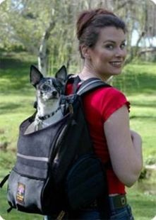 Backpack Style Dog Carrier
