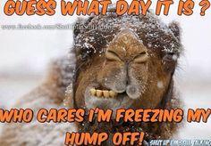 Still hating Iowa weather !