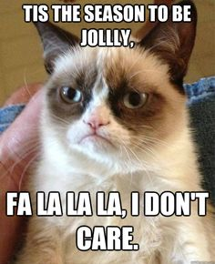 Hell No Kitty .For more humor pics and grumpy kitty visit Grumpy Kitty, Grumpy Baby, Grump Cat, Cat Cat, Baby Cats, Baby Pig, Cry Baby, Yup, Ohhh Yeah
