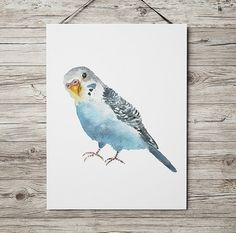 Very cute bird watercolor. Lovely beautiful budgie print. Nice nursery art. BUY 1 GET 1 FREE - use coupon code 777FOXY at checkout.  Comes in two