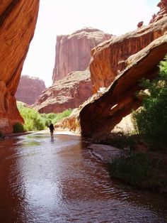 Utah ...this is the beginning of the narrows....prettiest place ever