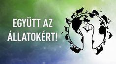 Állatvédelmi Falvonulás (okt.8.) 14:00 Bazilika, majd Hősök terén gyertyagyújtás