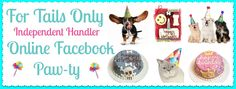 Host an online Pawty with me! Ask me how! Or....  Shop www.fortailsonly.com/#fluffnfur - consultant ID FH025 www.facebook.com/fluffnfur #ForTailsOnly  #FTO