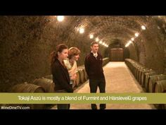 A Quest for Liquid Gold - Tokaj Wine - YouTube