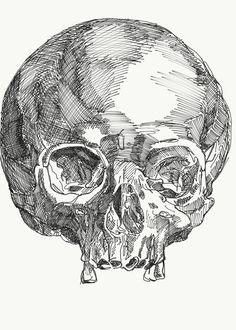 Skeletons, Abstract, Tattoos, Skulls, Dinner Ideas, Artwork, Summary, Tatuajes, Work Of Art
