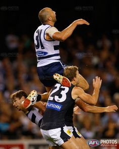 AFL 2013 Rd 03 - Geelong v Carlton - Steven Motlop ( and Tom Hawkins of the Cats celebrate during the 2013 AFL round 03 match between the Geelong Cats and the Carlton Blues at Etihad Stadium, Melbourne on April (Photo: Michael Willson/AFL Media) Cat Celebrating, Australian Football League, Sport Sport, Love My Boys, Football Team, Rugby, Legends, Photo Galleries, Action