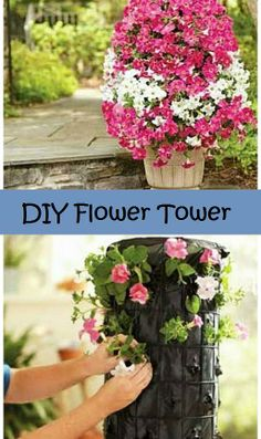Kaila's Place   Flower Tower