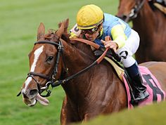 Dayatthespa leads the way in the Queen Elizabeth II Challenge Cup