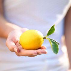 Natural skin care remedies for acne - Natural Organic Living Meyer Lemon Tree, Detox Your Liver, Lemon Benefits, Citrus Trees, Fruit Trees, Ginger And Honey, Alkaline Diet, Organic Living, Acne Remedies